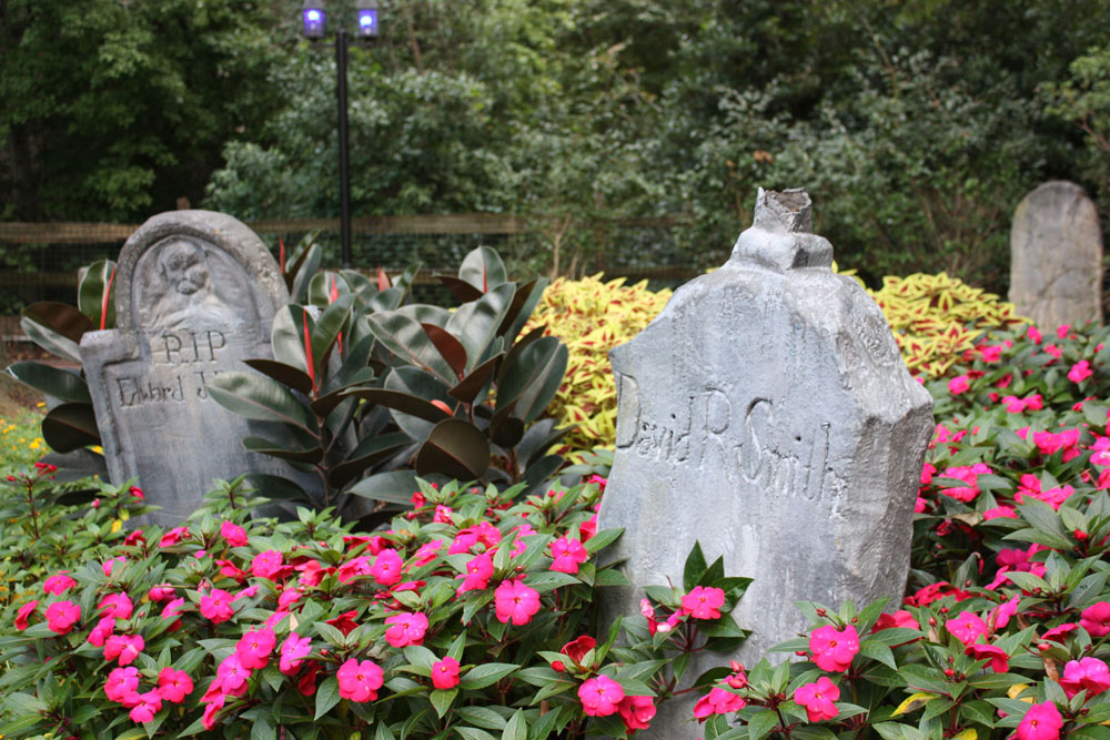 Busch Gardens Williamsburg Howl-O-Scream Halloween Landscape