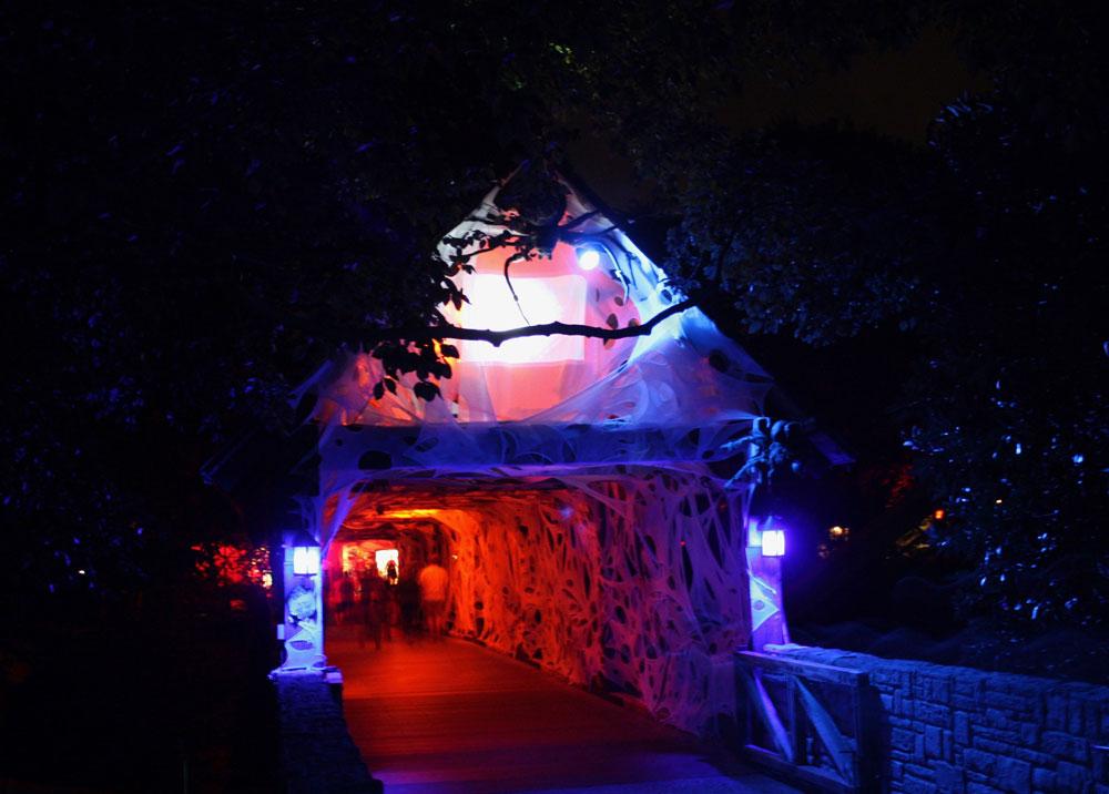 Busch Gardens Williamsburg Howl-O-Scream Spider Bridge Halloween