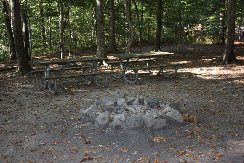 Chippokes State Park Campground Group Fire Ring