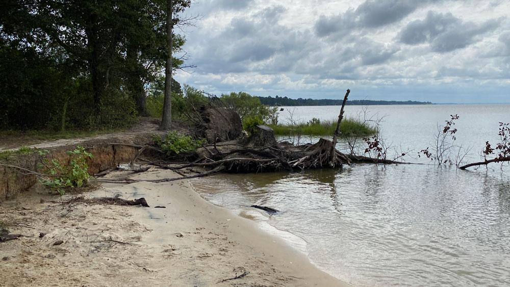 Access to the Beach at Belle Isle State Park