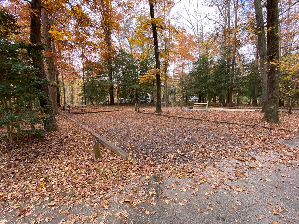 Westmoreland State Park Campground Loop A Back In Site