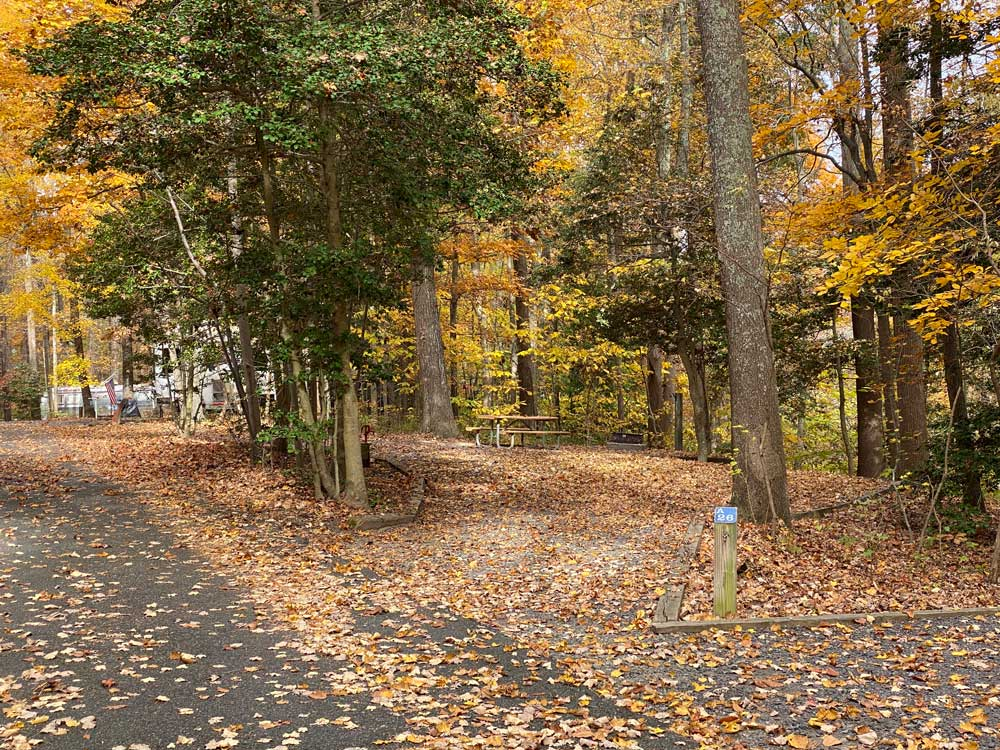 Westmoreland State Park Campground Loop A Pull Through Site