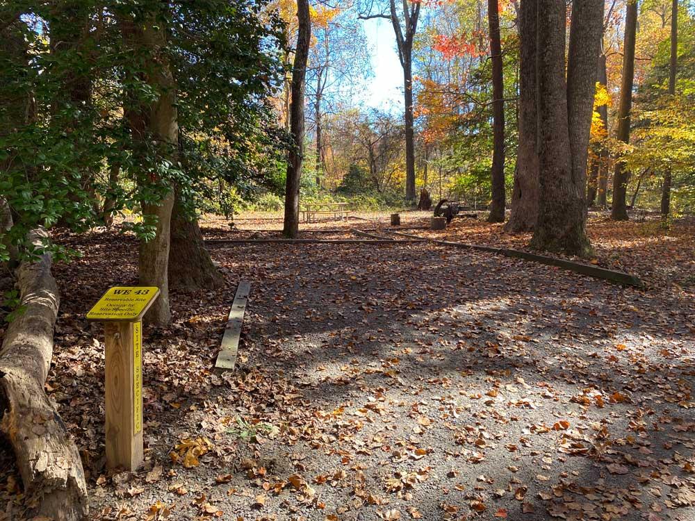 Westmoreland State Park Campground Loop B Back In Site