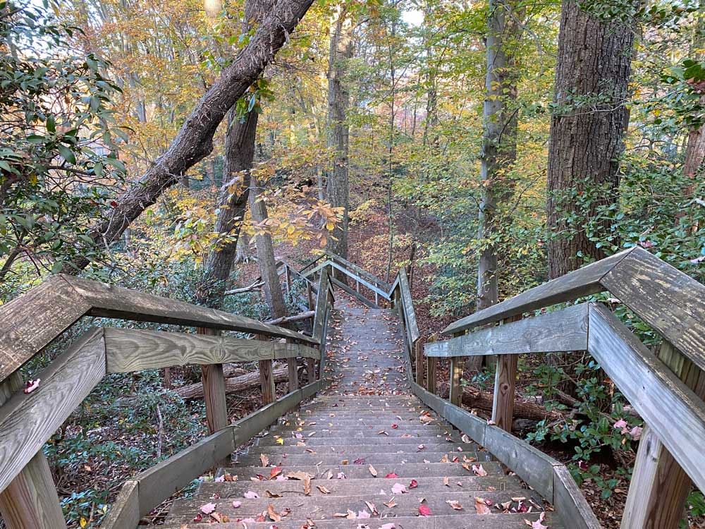 Westmoreland State Park Hiking Trail Stairs