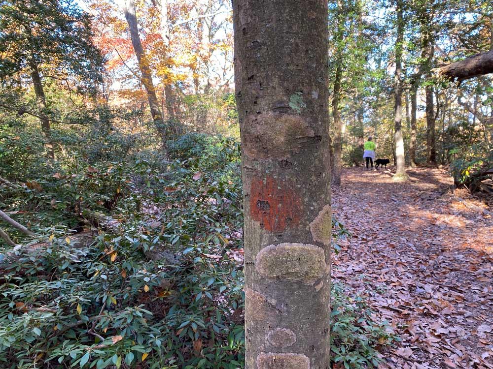 Westmoreland State Park Hiking Trail Marker