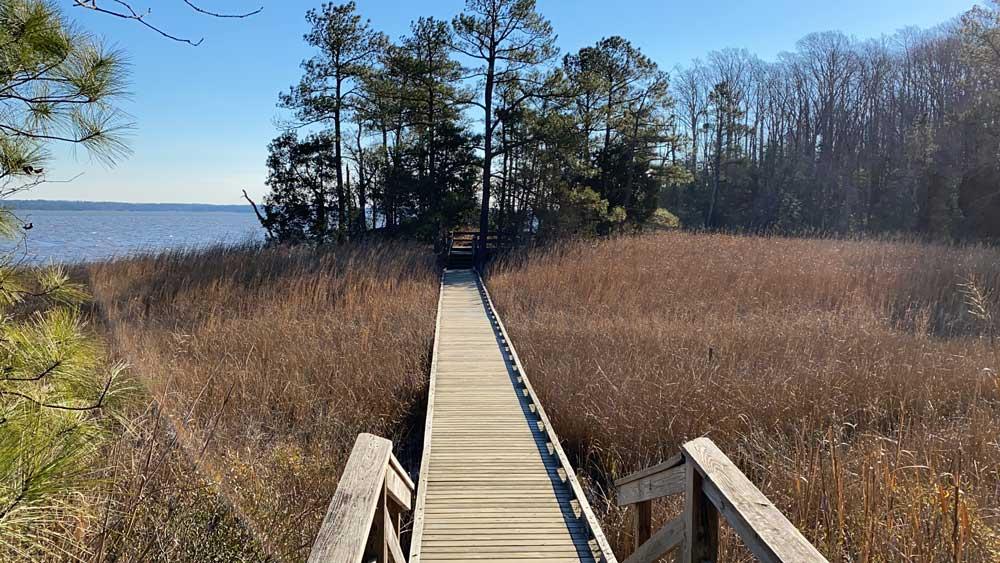 Bridge on Hiking Trail at York River State Park