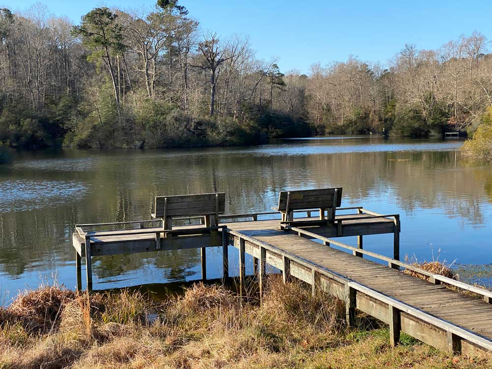 Dock on Fishing Pond at York River State Park