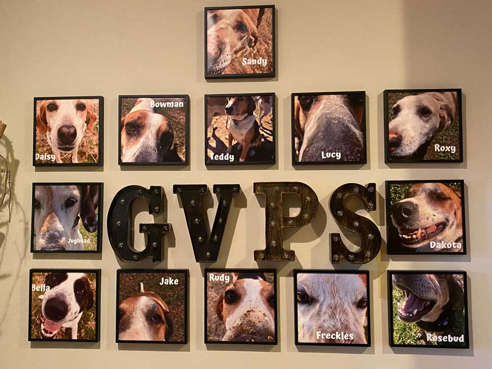 Good Luck Cellars Rescue Dogs