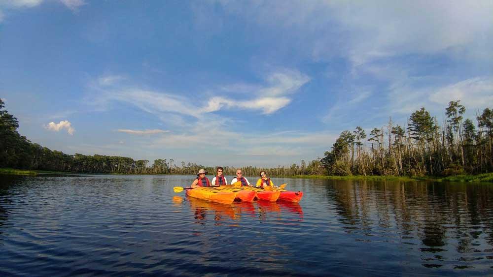 Alligator River Kayak Tour in the Outer Banks of North Carolina OBX