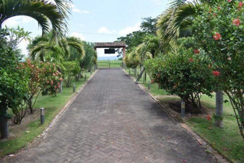 driveway to street