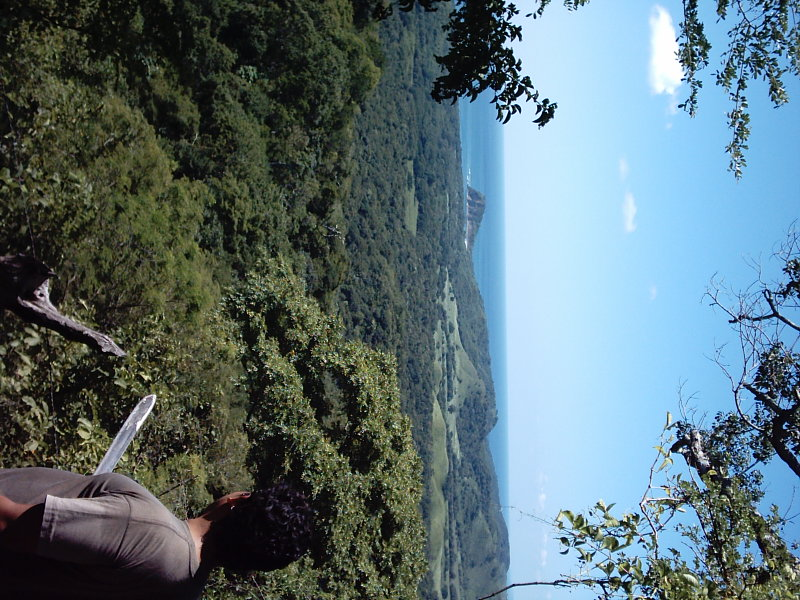 Nicaragua-Real-Estate-finca-ostional (7)