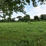Nicaragua-real-estate-farm-land