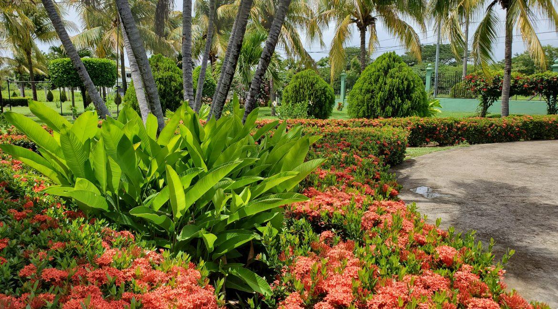 real-estate-nicaragua (3)