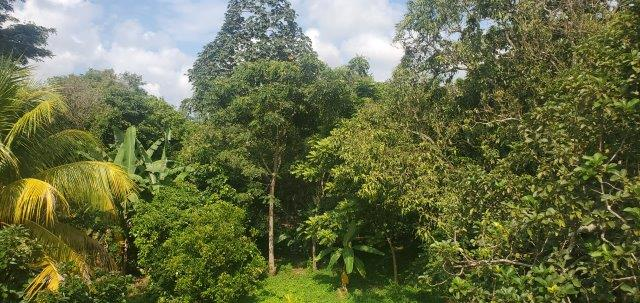nicaragua real estate (17)