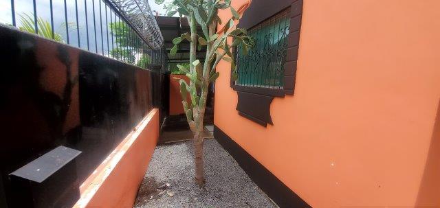 nicaragua real estate leon (35)