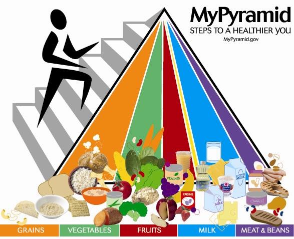 Food Pyramid 2005