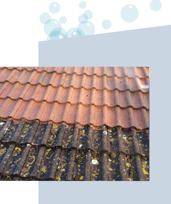 terra-cotta-roof-cleaning-before-and-after