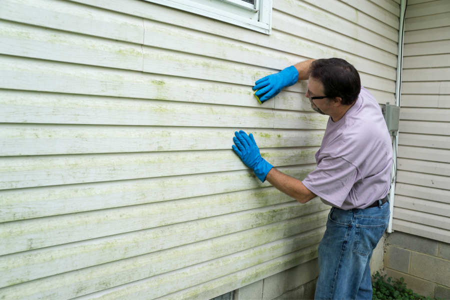 Man cleaning organic buildup from his vinyl siding with a sponge.