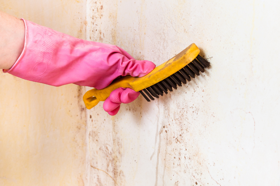 Person with pink gloves cleaning stucco siding with a soft bristle brush.