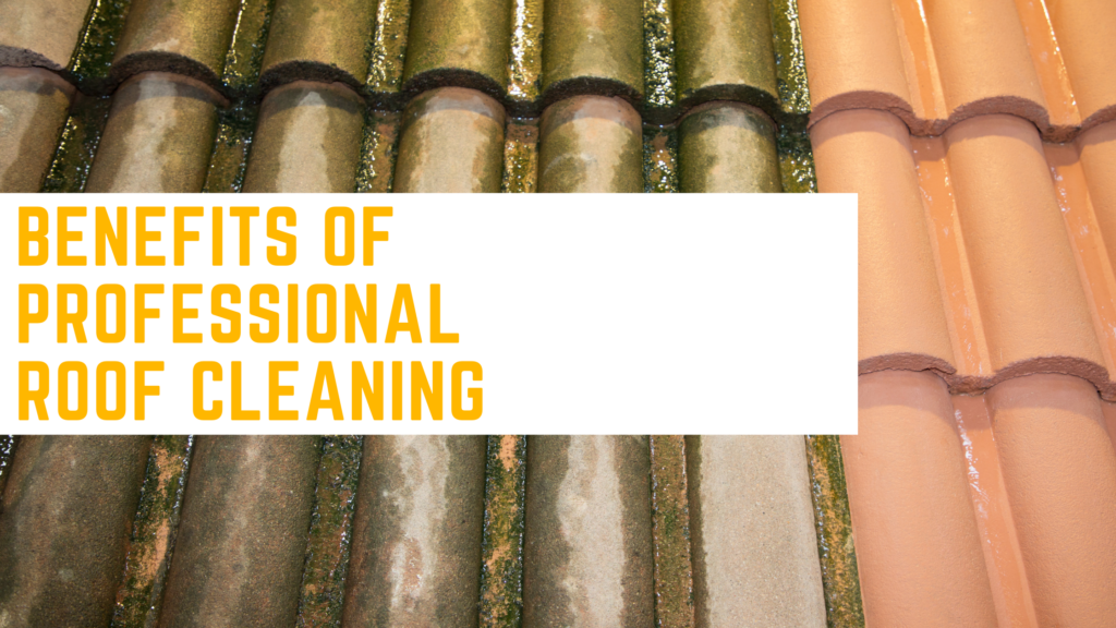 Professional Roof Cleaning Benefits Featured Image (1)