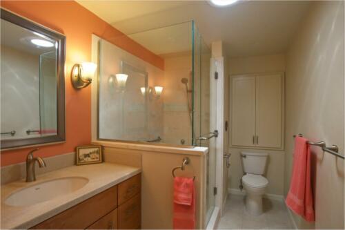 Halpern Bathroom