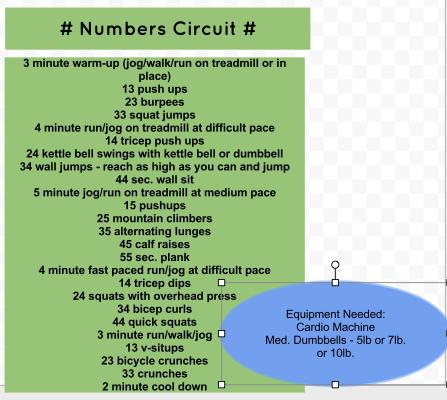 Numbers Circuit