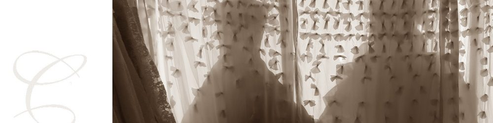 2 parts: Camillas Bridal logo and window view from back showing bridal silhouettes of mannequins