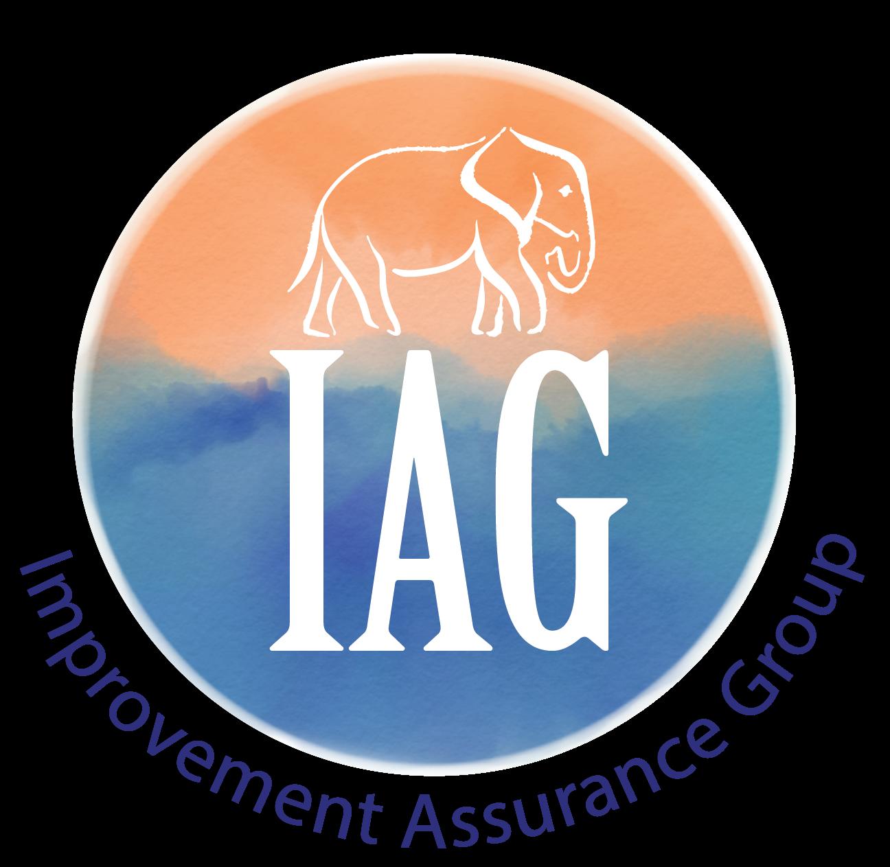 Improvement Assurance Group