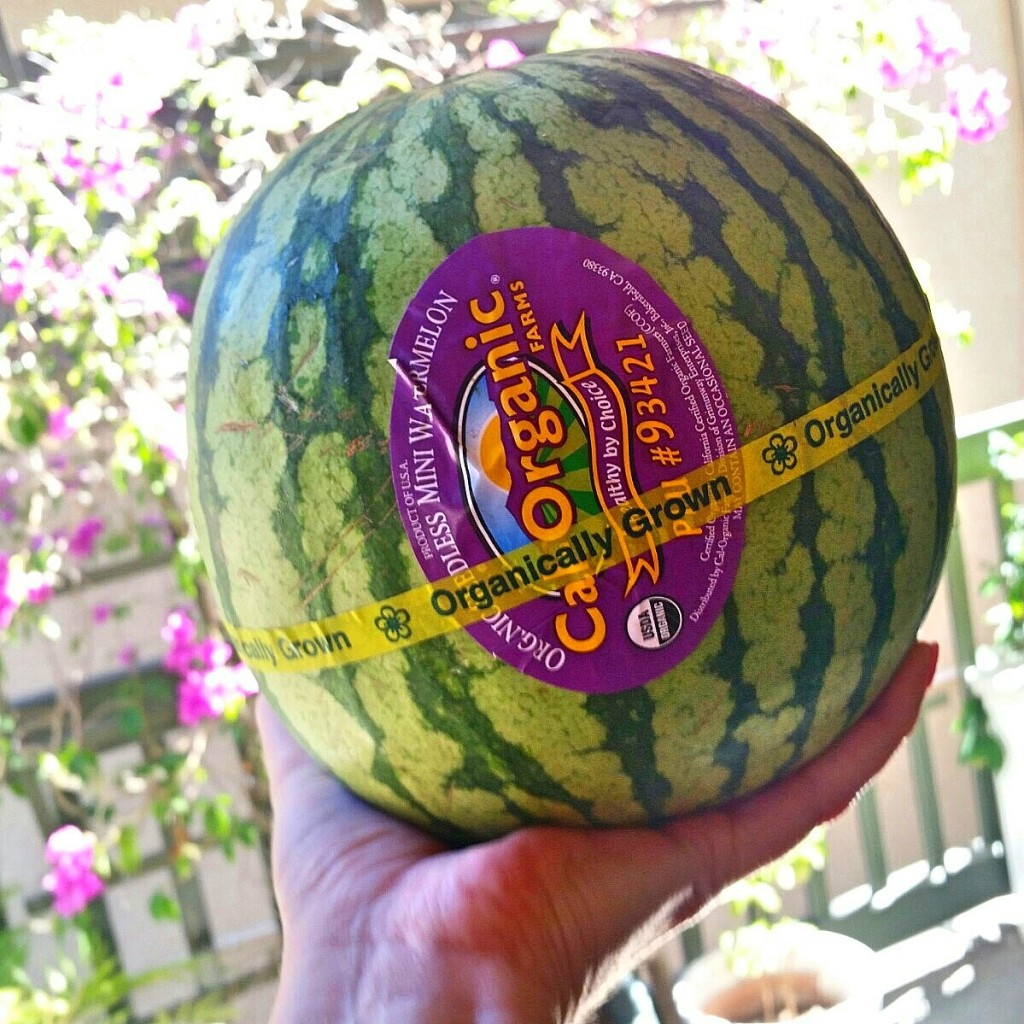 Clovers & Kale - Organic Mini Watermelon - Fresca