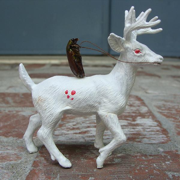 JaredKonopitski-600-14-The beetle who rides the phantom deer