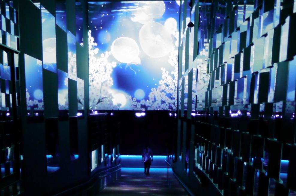 Медузы и сакура: волшебный тоннель в Скай Три