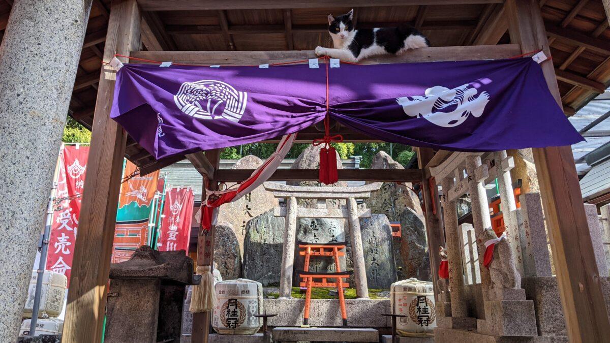 Кансайские путешествия: из Кобэ – в Киото!