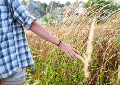 Lyme Disease: Prevention, Detection and Treatment