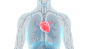 Can Patients at Low Risk of Surgery Have TAVR?