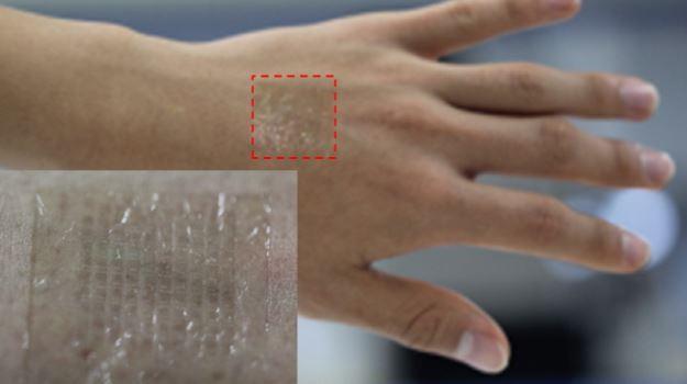 Transparent-Graphene-Electrodes
