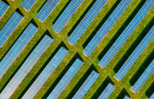 6 solar blogs that are increasingly popular this year