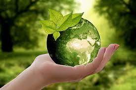 BP Green Sustainability