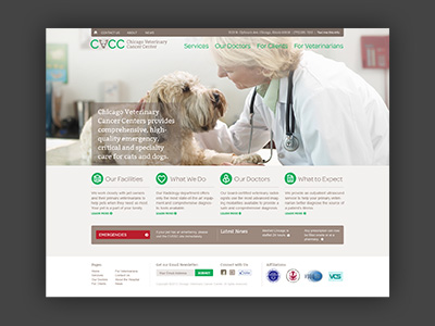 Chicago Veterinary Cancer Center