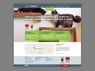 Pinnacle Animal Hospital