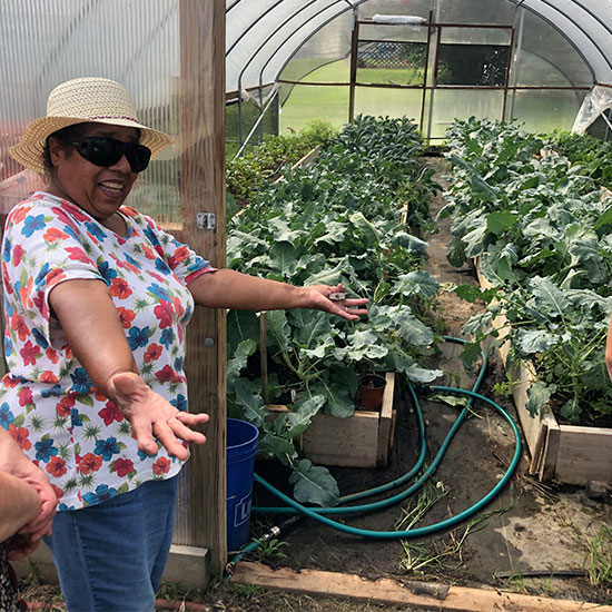 woman holder her hands out outside of small greenhouse