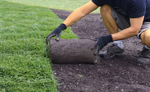 Benefits Of Sodding Your Lawn