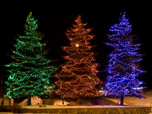 Three large living blue spruce trees, lit up in primary colors of green, red and blue photograhed against a dark night sky illumiate the area around them...a perfect way to ring in the Christmas season.  These Christmas trees were layered with freshly fallen snow near the Beaver Creek Ski Resort in Avon, Colorado in the Rocky Mountains.