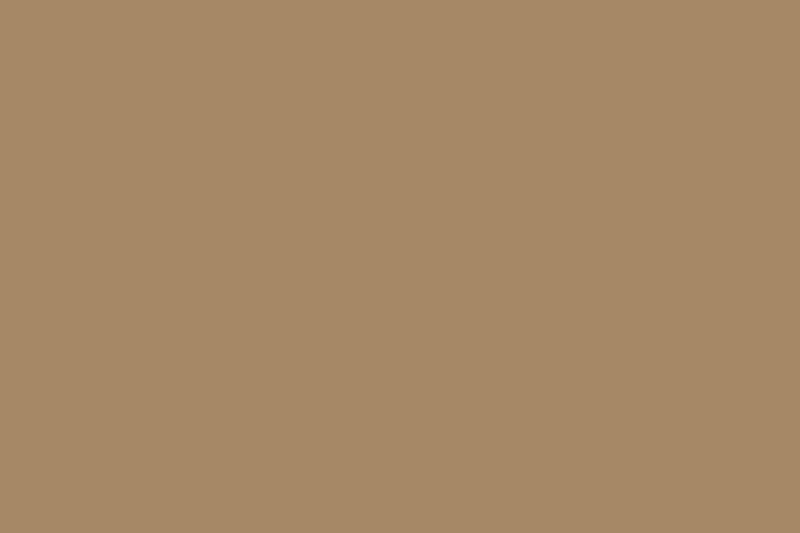 Iron Door Logo