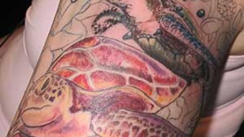 Photo Tutorial: turtle tattoo