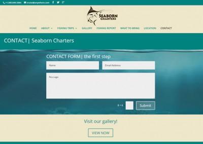 Responsive WordPress WEBSITE design - Grand Rapids MIScreenshot| contact