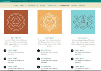 Responsive WordPress WEBSITE design - Grand Rapids MI-SCREENSHOT| what to bring page