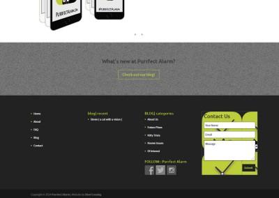 Responsive WordPress WEBSITE design - Grand Rapids MI-SCREENSHOT| home page - WordPress blog website design
