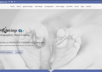 Responsive WordPress WEBSITE design - Grand Rapids MI-SCREENSHOT| portraits page