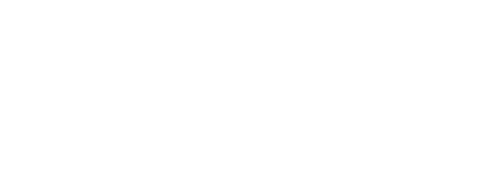 BONFIRE-logo_horizontal-WHT