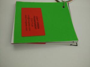 Light Green EVAVISION transparent EVA interlayer film for laminated safety glass (16)